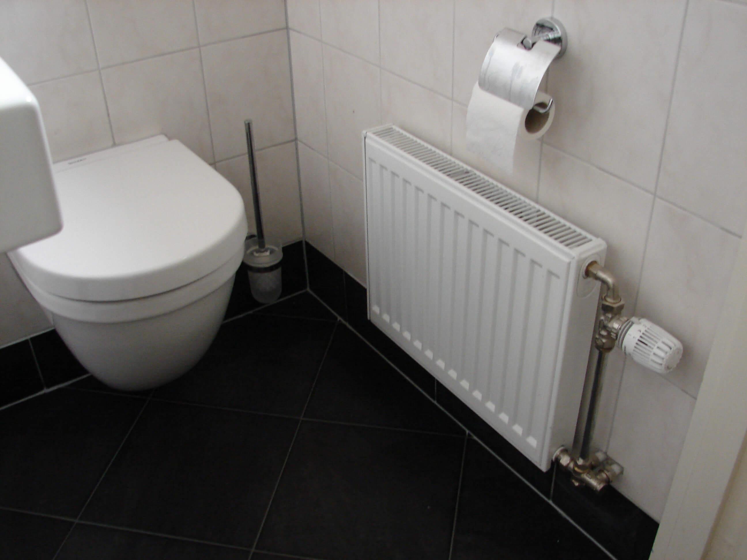 Renovatie toiletruimte 3